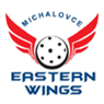 Eastern Wings Michalovce