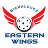 Eastern Wings Michalovce